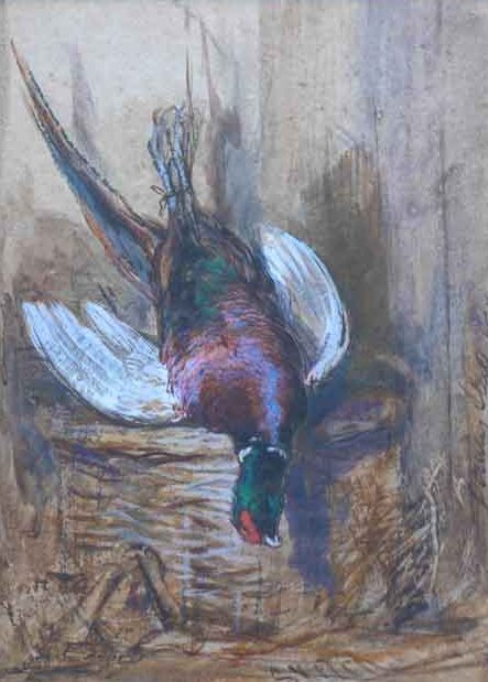 Pheasant watercolour by Gourlay Steell