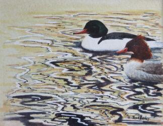 Ducks watercolour painting